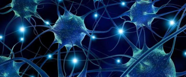 Hjärnsynaps